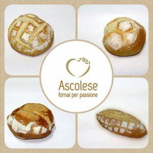 Il pane Ascolese